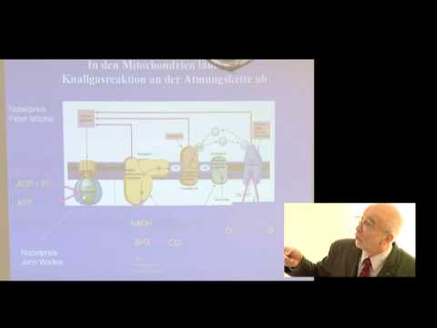 1/3:Prof.Gellerich:Gestörte Mitochondrienfunktion bei...Parkinson,Huntington,Sepsis,Ischämie,CPEO