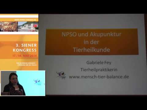 1/3: Gabriele Fey: NPSO und Akupunktur in der Tierheilkunde